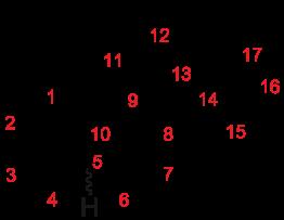 Nandrolone cypionate