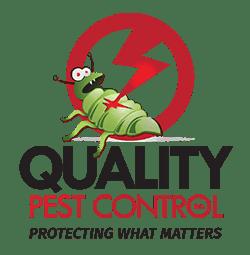 Pest Control Southend